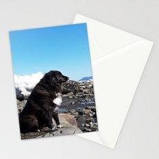 Coastal Dog on the Rocks Stationery Cards