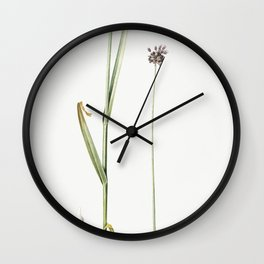 Sand leek  from Les liliacees (1805) by Pierre Joseph Redoute (1759-1840) Wall Clock