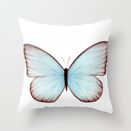 Butterfly Collection II Throw Pillow
