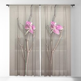 Fuchsia Orchid in the Summer Sheer Curtain