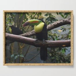 National Aviary - Pittsburgh - Keel Billed Toucan 1 Serving Tray