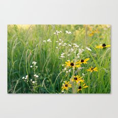In the Meadow 2 Canvas Print