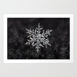 January Snowfake #5 Art Print