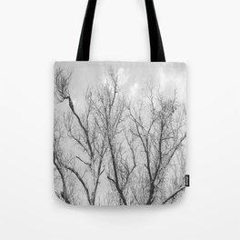 """Winter Starkness"" by Murray Bolesta! Tote Bag"