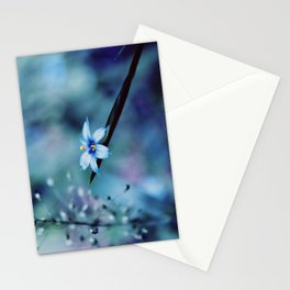 Blue on blue Flower Photography, Symphony in Blue Stationery Cards