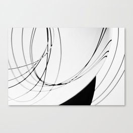 Shadowplay II Canvas Print