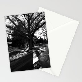Radial Light & Branch Stationery Cards