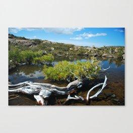 Alpine Moore Canvas Print