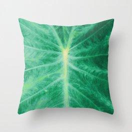 Colocasia Esculenta Throw Pillow