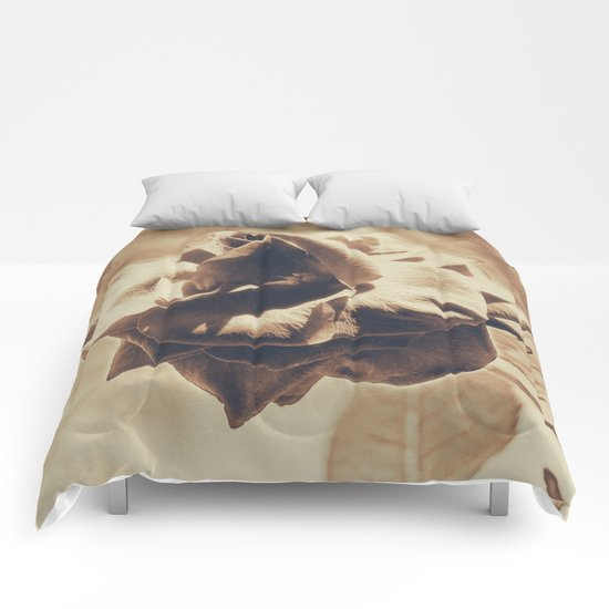 Vintage dreams, rose Comforters