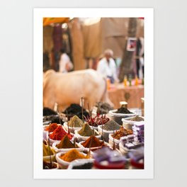 Spices of India Art Print