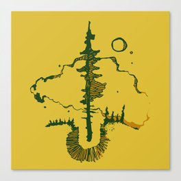 black spruce Canvas Print