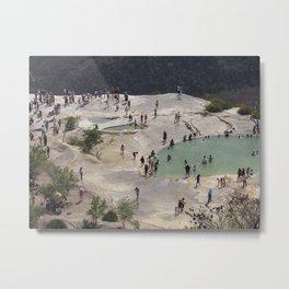 Ants. Metal Print