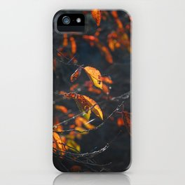 Dead Things Fall iPhone Case