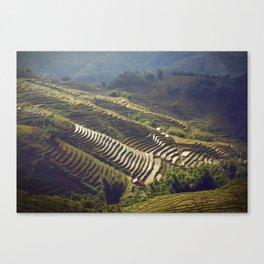 Rice terracing. Sapa, Vietnam. Canvas Print