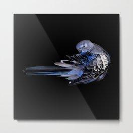 Bird Impact Metal Print