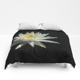 White Water Lily Visitor Comforters