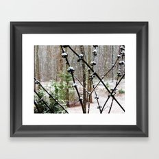 Snow Berry Framed Art Print