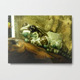 Blue and Black Frog Metal Print