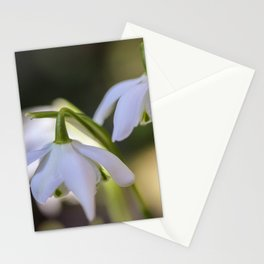Little woodland stars Stationery Cards