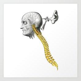 spinal column Art Print