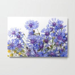 Cornflower and chamomile many flowers Metal Print