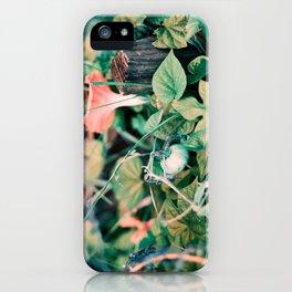 Fairy Vegetable Garden iPhone Case