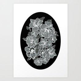Brooklyn Botanic Garden, Black and White Art Print