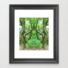 Wizard's Arch Framed Art Print