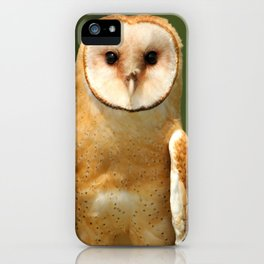In her eyes iPhone Case