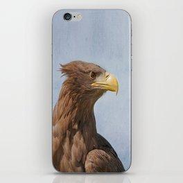 Tawny Eagle iPhone Skin