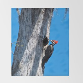 Bayou Bird (Pileated Woodpecker) Throw Blanket