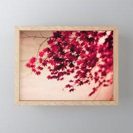 Red Fall Leaves Framed Mini Art Print