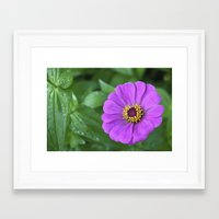 rileigh smirl Framed Art Prints featuring Bright Flower by Rileigh Smirl