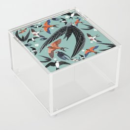 Swallows Martins and Swift pattern Turquoise Acrylic Box