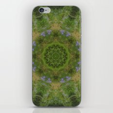 Mirror Image iPhone & iPod Skin