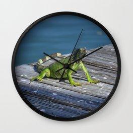 Green Iguana - Grand Cayman Wall Clock