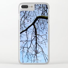 View of the sky 1 Clear iPhone Case
