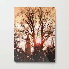 Rainy winterday in december Metal Print