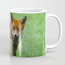 Wild Red Fox Coffee Mug