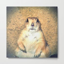 Vintage, Sitting Prairie Dog Metal Print