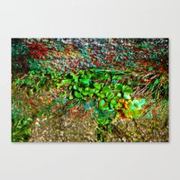 plant Canvas Prints featuring plant by ebdesign