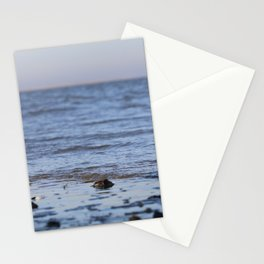 Shells in the sand 5 Stationery Cards