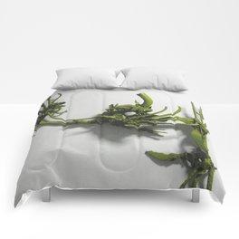 angel interceptor Comforters