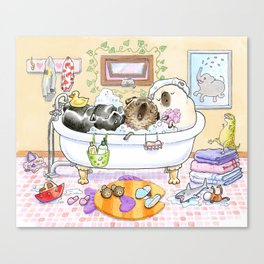 Bath Buddies - Three Pugs in the Tub Canvas Print