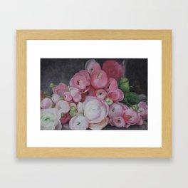 Pink Ranunculus Flower Painting Framed Art Print
