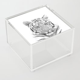 Black and white tiger Acrylic Box