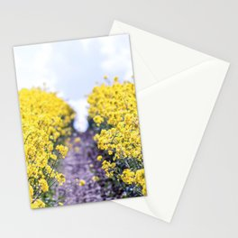Walk Through the Yellow Stationery Cards