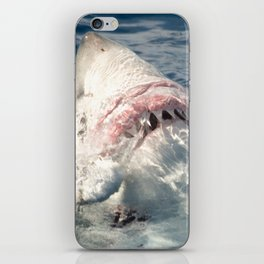 White Shark Carcharadon carcharias iPhone Skin