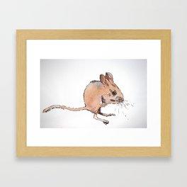 Kangaroo Mouse Framed Art Print